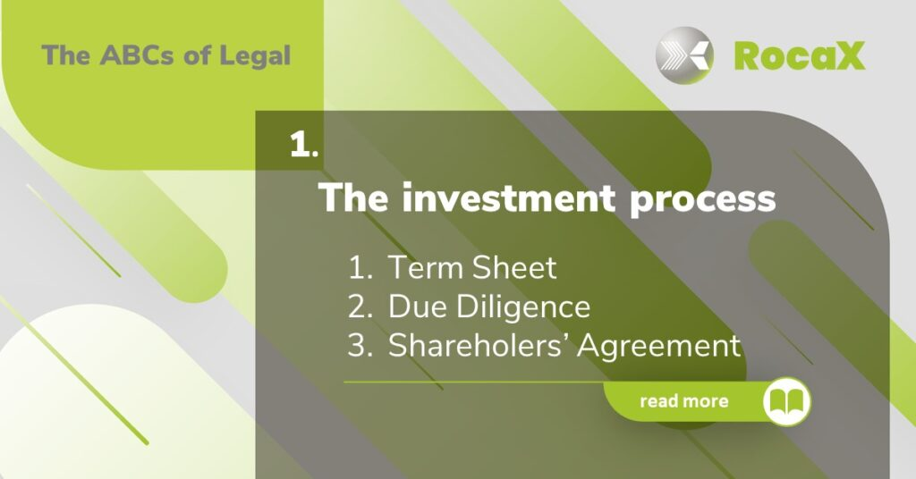 The Investment Process